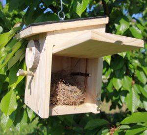 Caja nido Pirineos con nido_o
