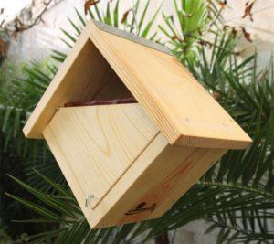 Caja nido frontal bierto Caixa niu frontal obert kabi kutxa frontea ireki caixa nido fronte aberta