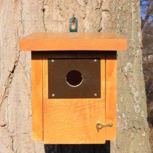 caja-nido-trepador-azul-caixa-niu-pica-soques-blau-kabi-kutxa-garrapoa-caixa-niño-gabeador-azul-mest-box-eurasian-nuthatch