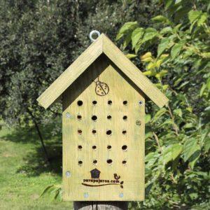 Hotel-para-mariquitas-hotel-per-marietes-marigorringoa-hotela-Hotel-for-ladybugs