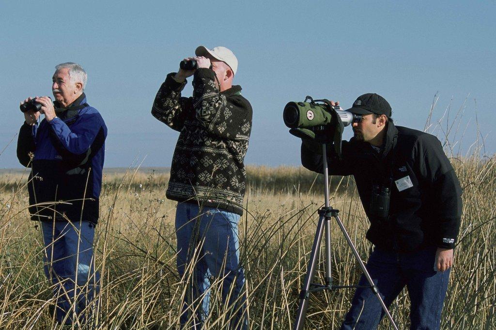 birdwatching-387463_o