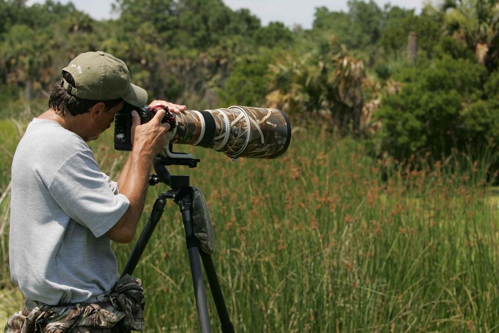 birdwatching_o