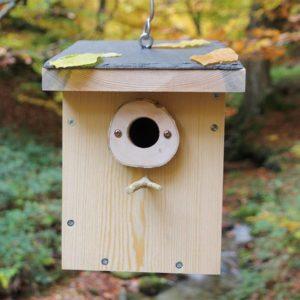 Caja nido para páridos y pequeñas aves insectívoras con tejado de pizarra C10, Caixa niu per a páridos i petits ocells insectívors, Habia kutxa hegazti intsektiboro txikientzat, Caixa niño para páridos e pequenas aves insectívoras