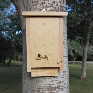 Caja nido CM 10 para murciélagos, detalle colgado con clavo forestal.