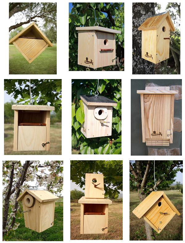 variedad-cajas-nido-parapajaros