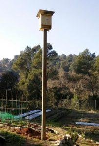 Poste con dos cajas nido CM11 colocada en un huerto urbano de Barcelona