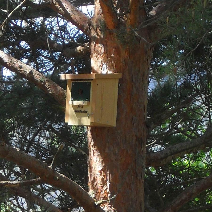 caja nido CP18 Forestal, con frontal anti pícidos en el parque de Sabiñánigo