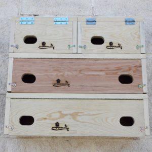 Ejemplo de composición con cuatro cajas nido: dos Cp 60 individuales y dos Cp 62 Duo