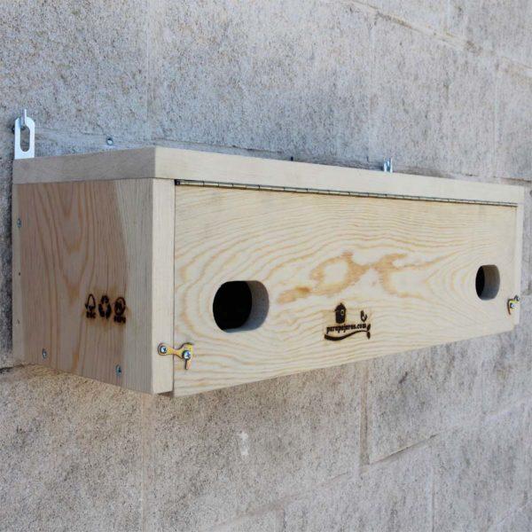 La CP62 es una caja nido doble para Vencejo común, Apus apus y Vencejo real, Apus melba.