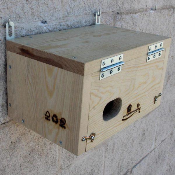 La CP60 es una caja nido para Vencejo común, Apus apus y Vencejo real, Apus melba.