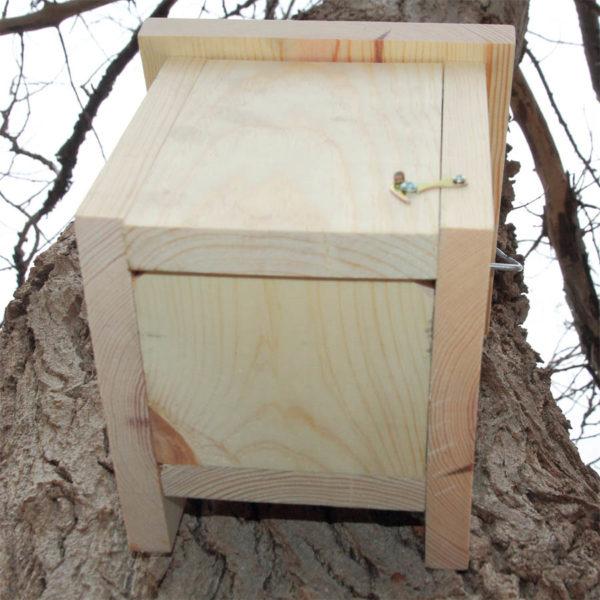 Caja nido para lirón con entrada pegada al tronco.