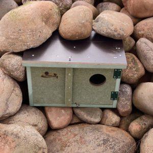Caja nido mochuelo, Caixa niu mussol, Caixa niño moucho, mozoloa habi kutxa, nest box Little eurasian scops owl.