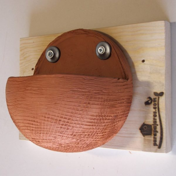 Caja nido Golondrina común, Caixa niu Oreneta vulgar, Caixa niño anduriña vulgar, Enara arrunta kutxa habia