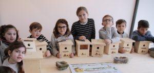 Taller de elaboración de cajas nido para aves insectívoras Domingo 16 de diciembre 2018 de 12:30 a 13:30h en el Museo Whurt La Rioja