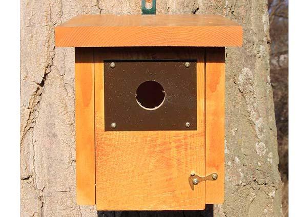 caja-nido-trepador-azul-caixa-niu-pica-soques-blau-kabi-kutxa-garrapoa-caixa-niño-gabeador-azul