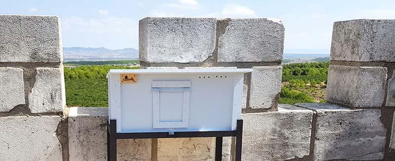 Caja nido de lechuza colocada en las almenas de la torre Hotel Bodega Pago de Cirsus.
