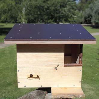 Caja nido Cernícalo vulgar y Cernícalo primilla Cp80