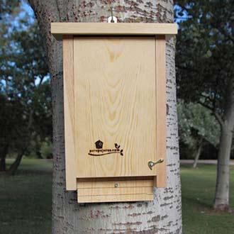 caja-nido-murciélgos-cm10-parapajaros.com