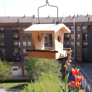 comedero para aves, menjadora, Hegaztientzako jantokia, alimentador de aves, bird feeder
