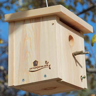 Caja nido Basic Cp15