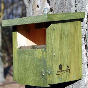 Caja nido para colirrojos y petirrojos, Cp16 colgada de un clavo forestal en el tronco de un árbol