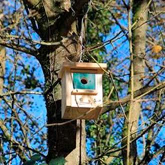 Caja nido aves insectívoras Cp18 colgada en bosque
