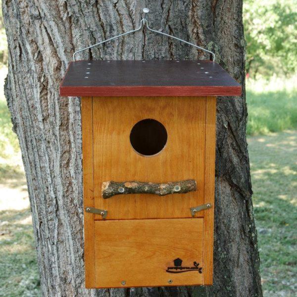 Caja nido para Carraca europea, caixa niño Rolieiro, caixa niu Gaig blau, kabi kutxa Karraka, nest box european roller