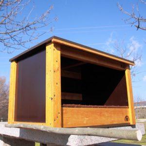 Caja nido para Halcón peregrino, Falcón peregrino, Falcó Pelegrí, Belatz handia, Peregrine falcon