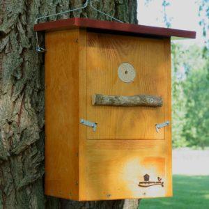 Caja nido para Pico picapinos, caixa niño Peto real, caixa niu Picot garser gros, kabi kutxa Okil handia , nest box Great spotted woodpecker.