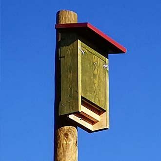 Caja nido de murciélagos Cm13 con sobre-tejado colocada en poste