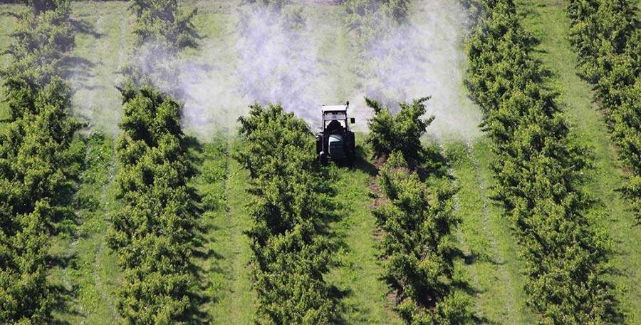 Control de plagas en agricultura convencional con costosos tratamientos fitosanitarios